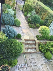 Evergreen planting softens stone with brick and granite sets