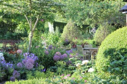 Topiary and summer planting