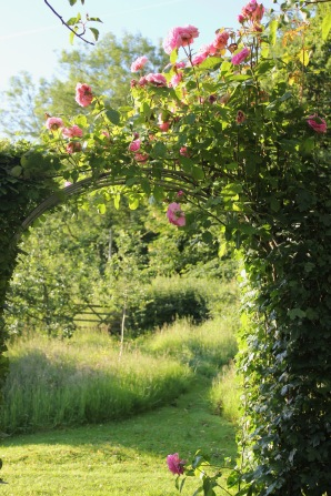 Creating rose covered archway invites exploration
